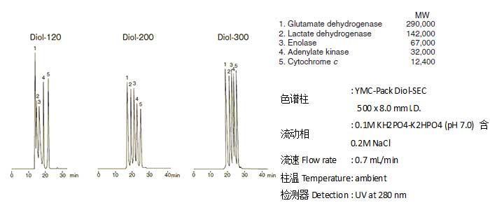 分子量一万到几十万的蛋白质分离